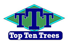 Top Ten Trees